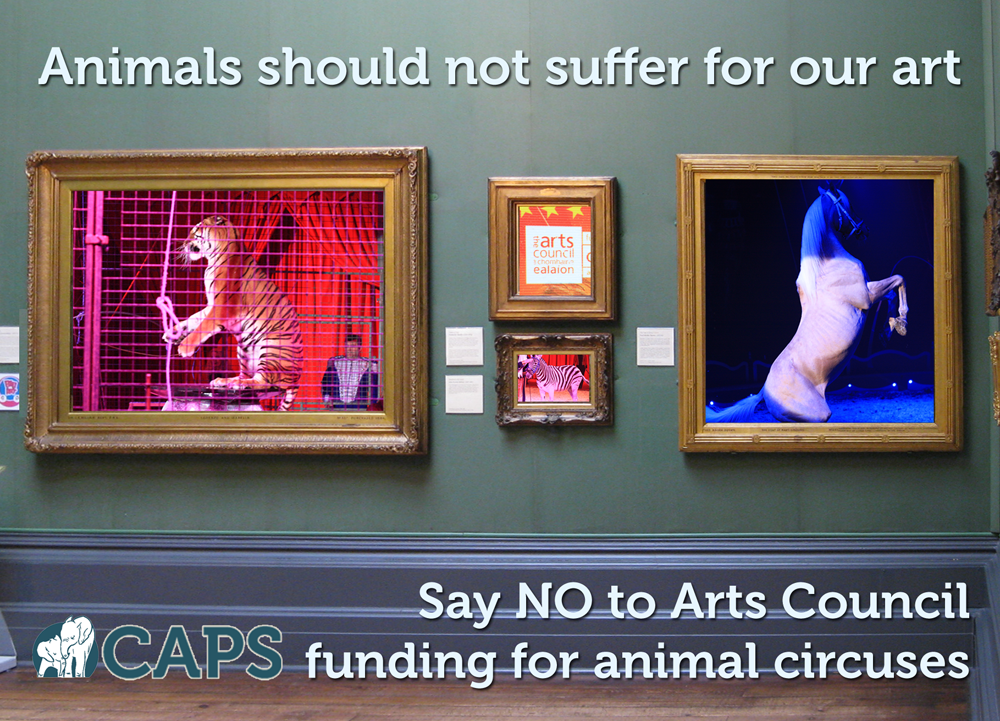 Order campaigning materials Â« Captive Animals Protection Society